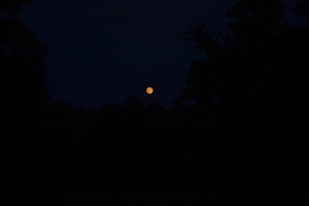 August Sturgeon Moon